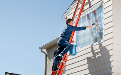 Glass and Window Cleaning